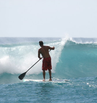 Stand Up Paddle Surfing Lessons
